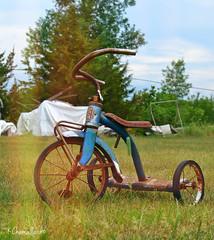 Old tricycle (Krissy-Anne ) Tags: old bike bicycle vintage antique decay tricycle rusty trike