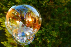 Living in a Bubble (chrischarlescook) Tags: life uk light reflection tree spring refraction bubble essex washing witham yahoo:yourpictures=waterv2 yahoo:yourpictures=reflectionsv2 chrischarlescookportfolio