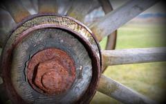 Wheel detail (Sol Brimars) Tags: macro wheel metal wagon iceland spring decay rusty reykjavik weathered weatheredwood cracked sland wagonwheel 2012 ecu oxidized skerjafjrur