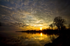 Another Fine Sunset (Matt Molloy) Tags: trees sunset red orange sun canada nature water silhouette yellow clouds reflections photography mirror golden crazy still nice bath awesome calm full neat colourful lakeontario mybackyard lovelife mattmolloy