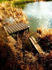 Fishing Peg, Milton Pond (langleyo) Tags: pond milton barnsley southyorkshire hoyland
