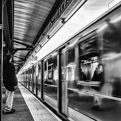 ~ in the subway at Court Square ~ (Janey Kay) Tags: nyc newyorkcity usa primavera train subway spring gare metro streetphotography bahnhof trainstation squareformat printemps sep2 formatcarr lagare janeykay photographiedelarue may2012 silverefexpro2 panasoniclumixdmcgh2 leicadgsummilux25f14 mai2012