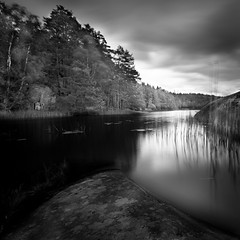 Endless Waters (Peter Levi) Tags: city longexposure blackandwhite bw lake seascape blancoynegro forrest sweden stockholm le nd110 bestcapturesaoi mygearandme mygearandmepremium mygearandmebronze mygearandmesilver mygearandmegold mygearandmeplatinum ringexcellence dblringexcellence tplringexcellence eltringexcellence