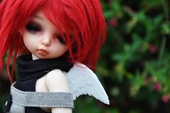 ADAD June #15 Grace (emmr_ {bjd}) Tags: angel mod leah goth fl fairyland ltf littlefee