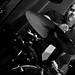 Eddie Japan @ Precinct 5.11.2012