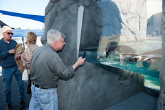 DS7_1529 (Aquarium of the Pacific - Development Events) Tags: june opening habitat keyes