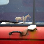 "Window Horse <a style=""margin-left:10px; font-size:0.8em;"" href=""http://www.flickr.com/photos/14315427@N00/7267936124/"" target=""_blank"">@flickr</a>"
