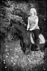 DSC_7506 (Dorothee Rie) Tags: horse black girl sommer feld wiese rosa blumen pony blond welsh pferd schwarz mdchen reiten reit rappe