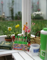 Mini Greenhouse6 (annesstuff) Tags: flowers plants garden toy miniature gardening eraser barbie mini greenhouse rement mattel diorama dollhouse hallmark megahouse roombox gardeningsupplies annesstuff