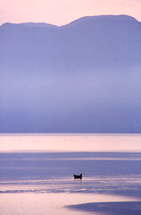 tranquility (angelobike) Tags: sea fishing tranquility greece crete θάλασσα αυγή eikones elladas ψάρεμα ψαράσ