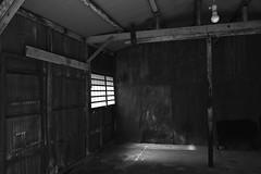 (barnabashouse) Tags: raw sigma nara 2012 foveon dp1 sigmaphotopro