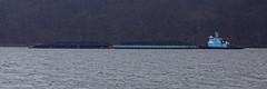 DonJon Marine Tugboat Sarah Ann (thetrick113) Tags: vessel tugboat hudsonriver barge hudsonvalley aggregate sarahann donjon stonebarge putnamcountynewyork coldspringnewyork workingvessel littlestonypointpark aggregatebarge sonyslta65v donjonmarinecompany hudsonrivertugboat tugboatsarahann
