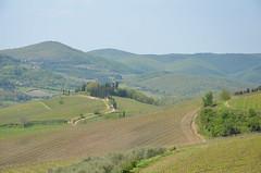 III (Makro Paparazzi) Tags: italy nature nikon tuscany toscana priroda toskana naturephotography italija d7000 nikon18105mmf3556vr