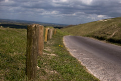 WHH-18 (liamworrall) Tags: england horse white hill oxfordshire