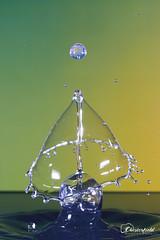 DSC00613 (David.Chesterfield) Tags: art water drops splash