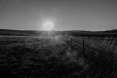 Following the fence line (pardalite) Tags: light sunset fence landscape wire