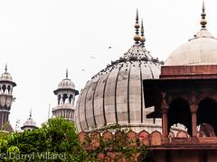 Old Delhi_IMG_0124.jpg (dvillaret) Tags: old delhi mosque masjid jama