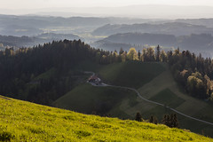 View from a hill (Role Bigler) Tags: nature schweiz switzerland suisse natur eveninglight greenhills emmental abendlicht grünehügel canoneos5dsr ef4070200isusml