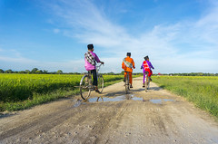 three boy cycling in paddy field (sydeen) Tags: life road blue boy sky cloud green field bike bicycle horizontal asian three countryside costume asia day rice offroad muslim traditional clothes cap cycle malaysia leisure raya celebrate sarong aidilfitri malay