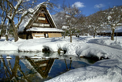 Hut in snow (wkwoo) Tags: shirakawago unescoworldheritagesite thatchroof snow winter white reflection pond sunny tree japan