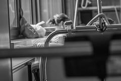 _DSC2564 (LuposAter) Tags: hospital bokeh sony alpha darmstadt krankenhaus slt 58 spital