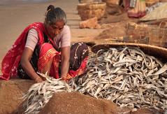 Hair bun woman with long fish.jpg (melissaenderle) Tags: labor vizag andhrapradesh travel asia