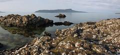 04_06_2016_Panorama2 (andysuttonphotography) Tags: panorama rock landscape island islands coast scotland small wide shoreline rocky scottish panoramic an coastal shore muck isle isles basalt hebrides eigg sgurr hebridean