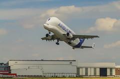Airbus Beluga (Krnchen59) Tags: germany airport pentax aircraft hamburg airbus beluga flugzeug elke k7 finkenwerder krner a300600st krnchen59