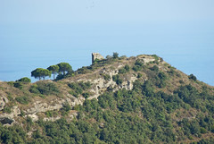 macchia mediterranea (acqua di mare) Tags: liguria collina vegetazione macchiamediterranea