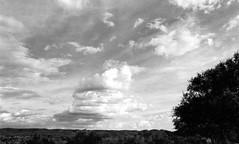 mpix 55 061016 N80 28mm R60 BW400CN 061616 008e ~ Headed This Way (BDC Photography) Tags: pipecreek texas usa nikonafnikkor28mmf28dlens nikon nikonn80 hoyapro152mmmcuv0filter nikonhn2lenshood clouds kodakprofessionalbw400cnfilm 35mmfilm blackwhite epsonperfectionv600photoscanner bwfp
