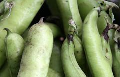 01-IMG_2587 (hemingwayfoto) Tags: bio bohne dick dickebohnen food gemse grn landwirtschaft lebensmittel markt saubohne schale vegetarisch vitamin