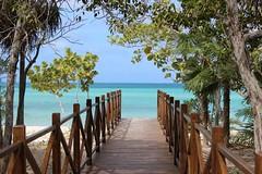 (cori573) Tags: ocean blue trees vacation sun beach water sand cuba tropical