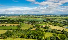 Somerset Levels from Glastonbury Tor