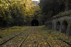 Parc des Buttes Chaumont (1) (Alexander JE Bradley) Tags: autumn trees light wild paris france green abandoned overgrown leaves train french photography nikon ledefrance metro empty neglected tracks railway tunnel line urbanexploration end disused discarded idle fr deserted 19th sleeper ironhorse rer sncf unused parisienne rapt 75019 petiteceinture urbanwasteland unoccupied parcdesbutteschaumont lapetiteceinture smallbelt parisledefrance 19me chemindeferdepetiteceinture alexanderbradley alexanderjebradley