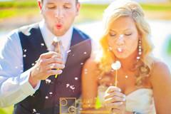 Blowing Dandelions wedding photo (clanegessel) Tags: flowers wedding blowing dandelion wishing seattleweddingphotography seattlewedding seattleweddingphotographer seattleweddings seattlebride