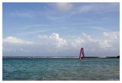 17052012-IMG_9137 (jacques.kayser) Tags: paris france vacances guadeloupe tokheim departementsdoutremer