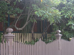 "The Shady, Hidden verandah of ""Clowance"", a Late Victorian Villa - Ballarat (raaen99) Tags: city brown house building tree brick home leaves stone architecture facade fence garden post painted name cement 19thcentury decoration australia victoria carving victoriana woodenfence villa castiron historical verandah residence housename nationaltrust ballarat goldrush picket 1893 redbrick ornamentation nineteenthcentury picketfence 1890s 1892 valance countryvictoria gardenfence domesticarchitecture victorianera heritagelisted newelpost clowance goldrushera brickandstone renderedbrick cementrender provincialvictoria boomstyle architecturallydesigned boomstylearchitecture timbervalance clowancehouse isaiahpearce wegribble"