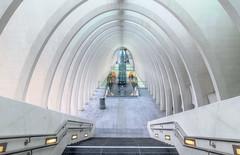 Lige-Guillemins railway station (Subversive Photography) Tags: abstract glass architecture modern arch belgium symmetry liege futuristic santiagocalatrava danielbarter