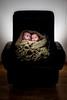 053-Lapsikuvia-6kk (Rob Orthen) Tags: studio childphotography offcameraflash strobist roborthenphotography lapsikuvaus