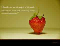 (aniribe) Tags: strawberry nikon creative
