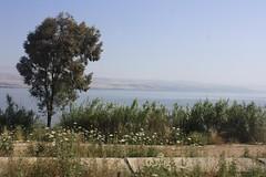 Viagem a Israel 2012 - G4 - Nascente do Jordão, Nimrode