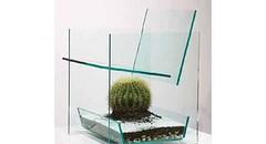 Espinhos a vista (Vidro Impresso) Tags: cactus vidro chair espinhos cadeira cengiz tranparencia deger revistavidroimpresso