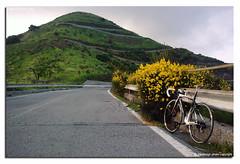 Verso Monte Timone (fdpdesign) Tags: mountain tarmac strada liguria genova monti specialized militare sestriponente scarpino tornanti promavera fact8 montetimone cornoscalata