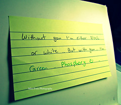 Phosphor .. (Sara's iPod..) Tags: white black green love yellow book sticky letters note phosphor