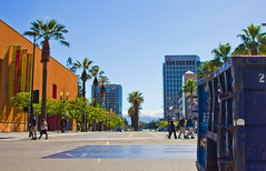 Downtown San Jose (andrewpabon) Tags: california downtown sanjose palmtrees