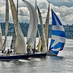 The Race (tacoma290) Tags: seattle sport nikon racing pugetsound yachts spinnaker blake eyecandy elliotbay teamwork blakeisland whitecloud therace