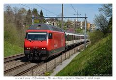 Re 460 061-5 (CC72080) Tags: train sbb locomotive tolochenaz cff re460 interrégio