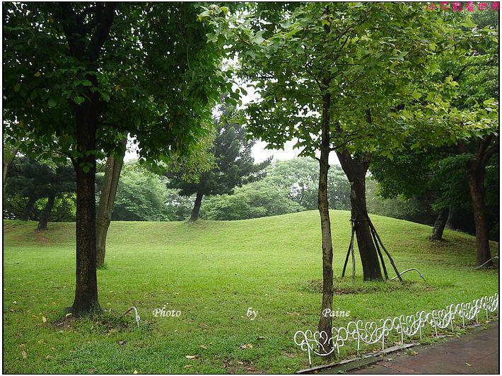 大溪埔頂公園 (18).JPG