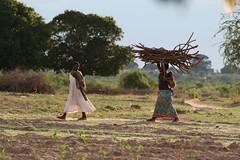 tanzania stora 2403