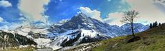Spritzkarspitze rundrum (Karwendel, Tyrol, Austria) (Claude@Munich) Tags: autostitch panorama alps tree austria tirol sterreich spring maple alpine alpen baum tyrol eng tal karwendel ahorn ahornboden claudemunich vomp ostalpen lamsenspitze hinterriss bigmapleplain alpineparkkarwendel groserahornboden hochglck hinterautalvomperkette engalpe spritzkarspitze eiskarlspitze grubenkarspitze schafkarspitze barthspitze